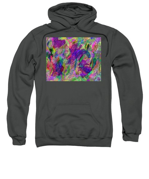 Color Dream Play Sweatshirt