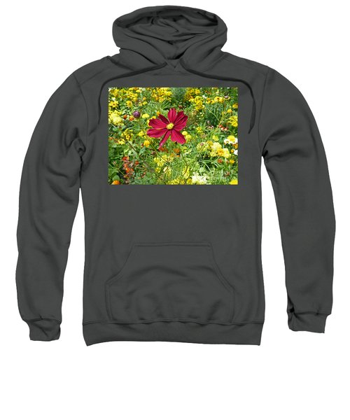Colorful Flower Meadow With Great Red Blossom Sweatshirt