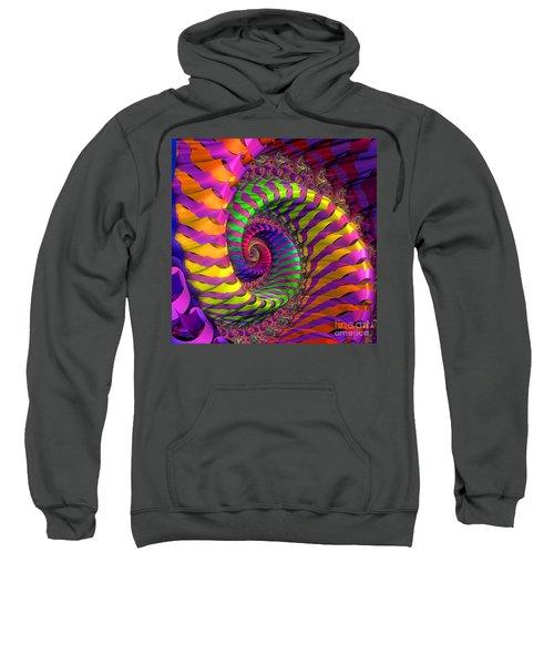 Coloured Spiral Wheel Sweatshirt