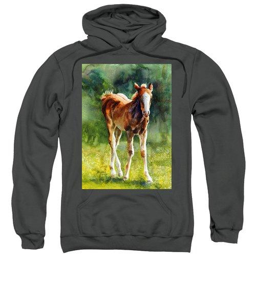 Colt In Green Pastures Sweatshirt