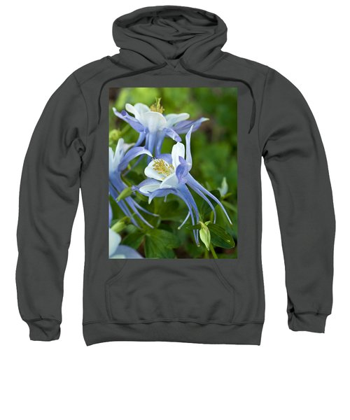 Columbine-2 Sweatshirt