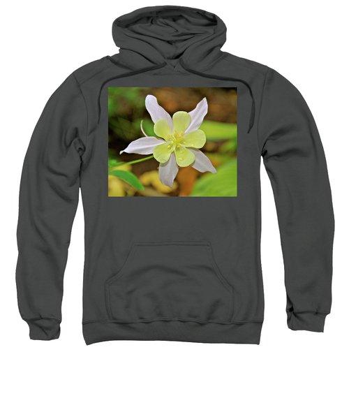 Columbine Charlie's Garden Sweatshirt