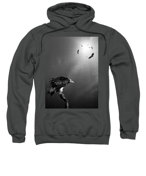Conceptual - Vultures Awaiting Sweatshirt