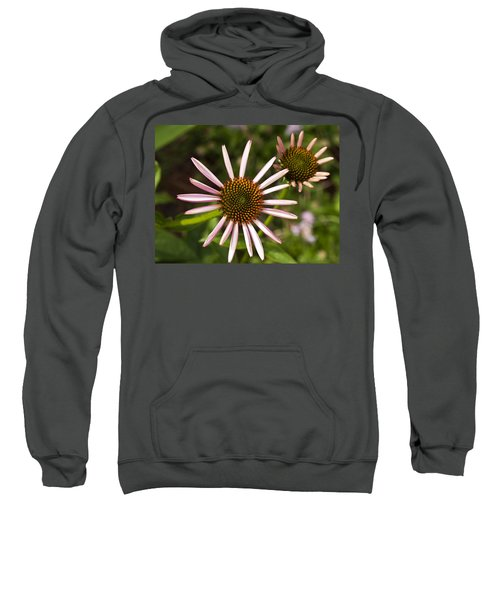 Cone Flower - 1 Sweatshirt