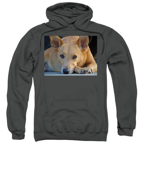 Cookie Chillin'  Sweatshirt