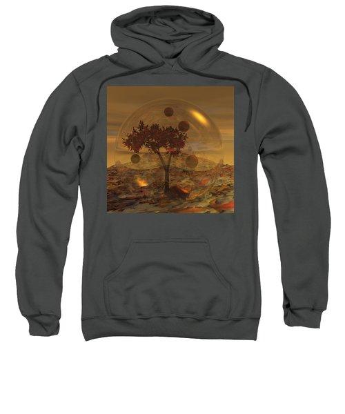 Copper Terrarium Sweatshirt
