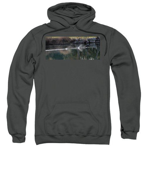 Cormorant Take-off Sweatshirt