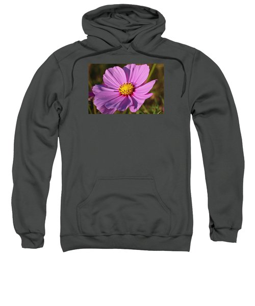 Cosmos Love Sweatshirt