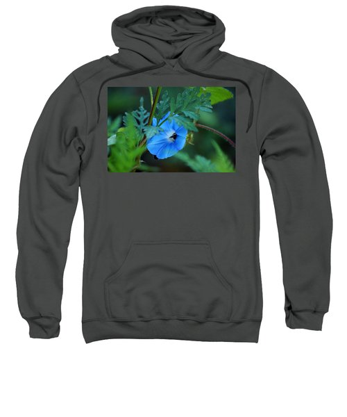 Sweatshirt featuring the photograph Country Blue by Kim Pate