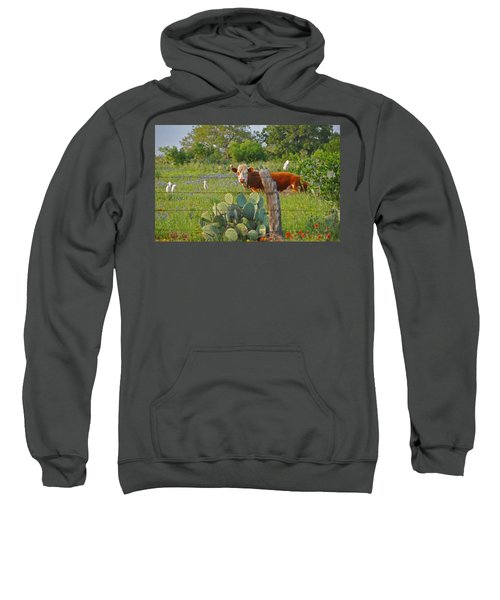 Country Friends Sweatshirt