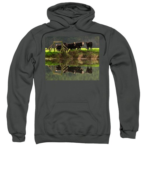 Cow Reflections Sweatshirt
