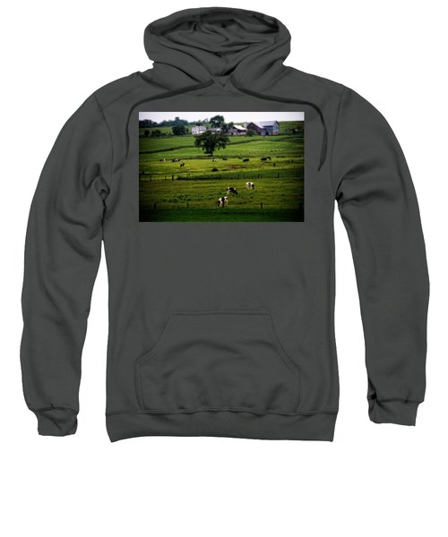 Cows On The Farm Amish Country Sweatshirt