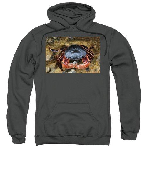 Crabby Pants  Sweatshirt