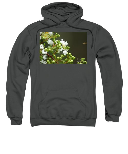 Sweatshirt featuring the photograph Crape Myrtle by Kim Pate
