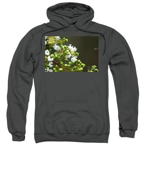 Crape Myrtle Sweatshirt