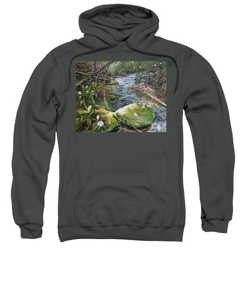 Creek -  Beyond The Rock - Mountaintown Creek  Sweatshirt