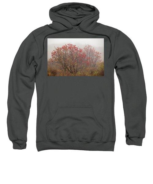 Crimson Fog Sweatshirt