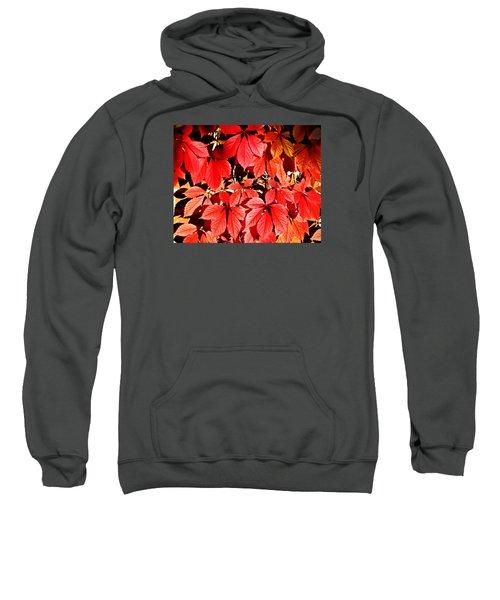 Crimson Virginia Creeper 2 Sweatshirt