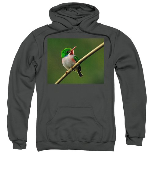 Cuban Tody Sweatshirt by Tony Beck