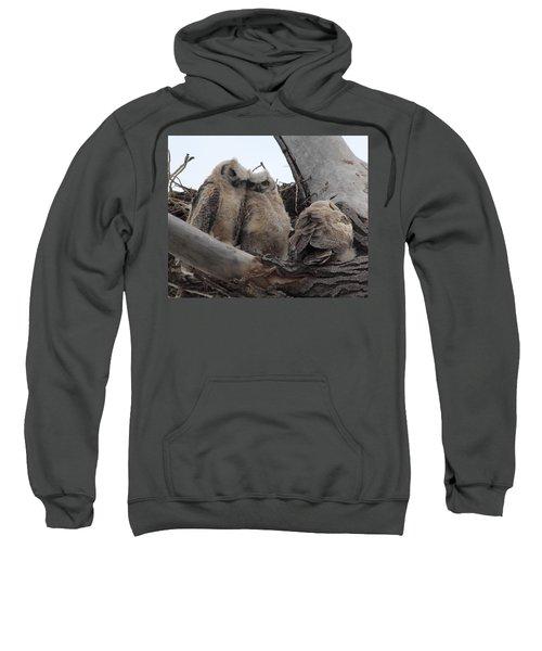 Cuddling Up Sweatshirt