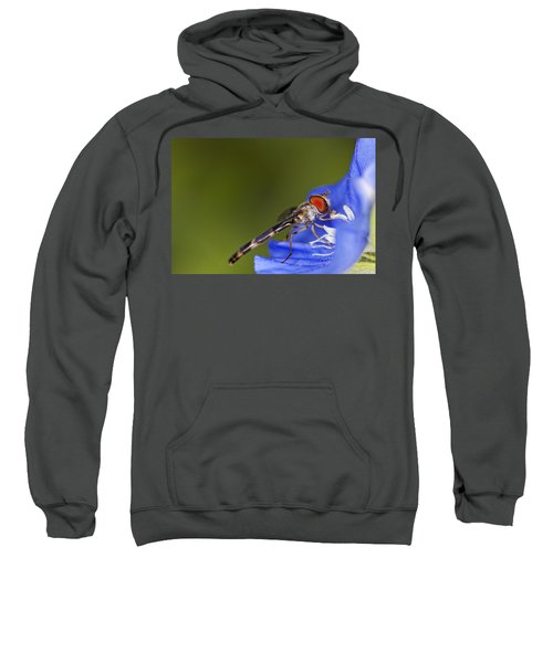 Damselfly 2 Sweatshirt