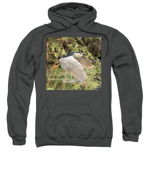 Dancing Through The Trees Sweatshirt