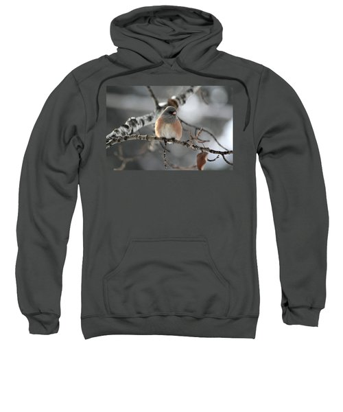 Dark-eyed Junco Sweatshirt