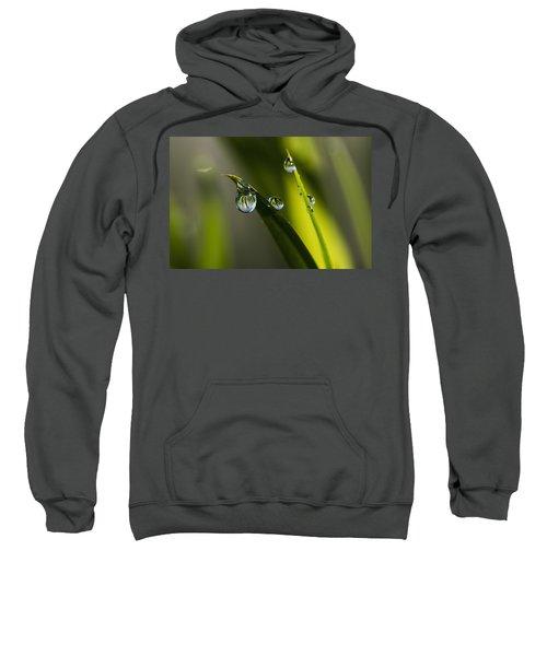 Dew Hangs From The Leaves_ Astoria Sweatshirt