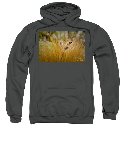 Dew On Ornamental Grass No. 4 Sweatshirt