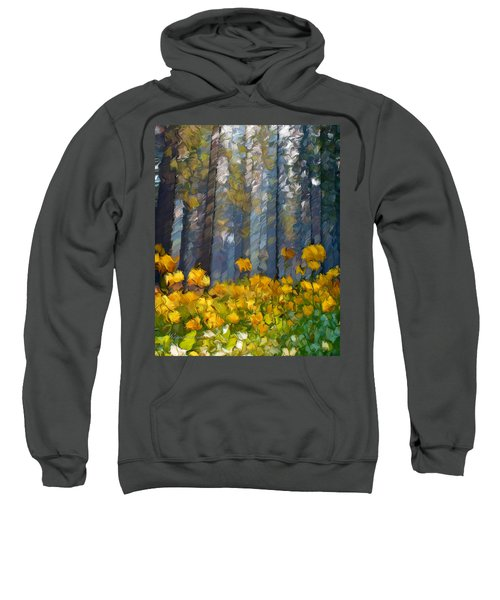 Distorted Dreams By Day Sweatshirt