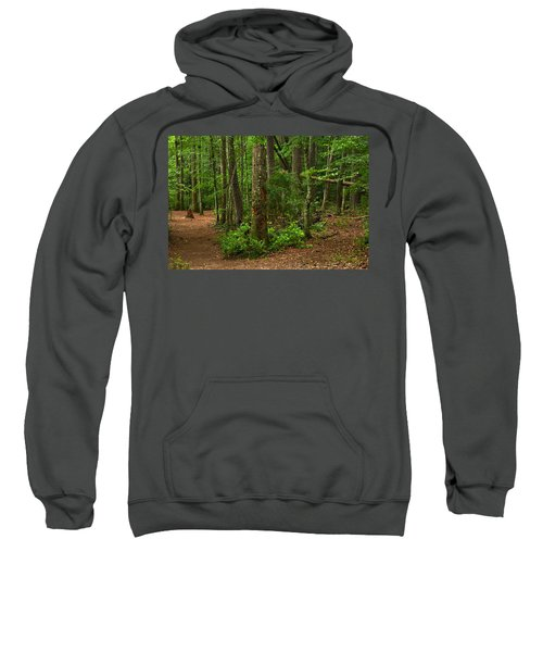 Diverted Paths Sweatshirt