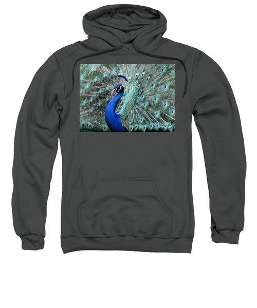 Do You Like Me Now Sweatshirt