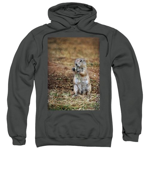 Doggie Snack Sweatshirt