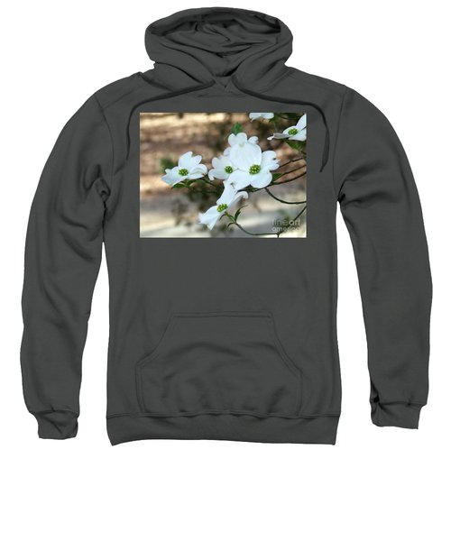Dogwood 2 Sweatshirt