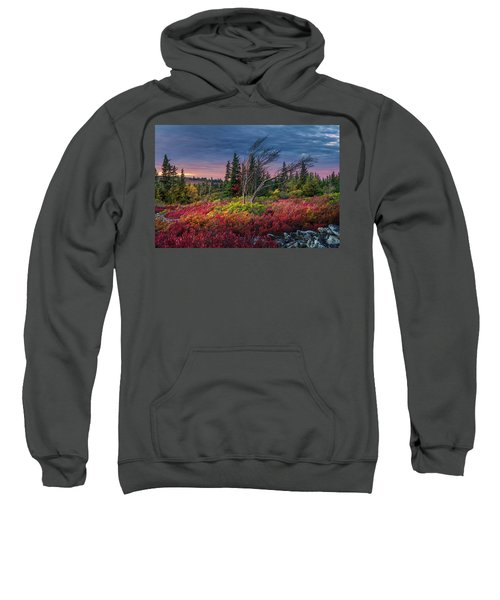 Dolly Sods Windswept Sunset Sweatshirt