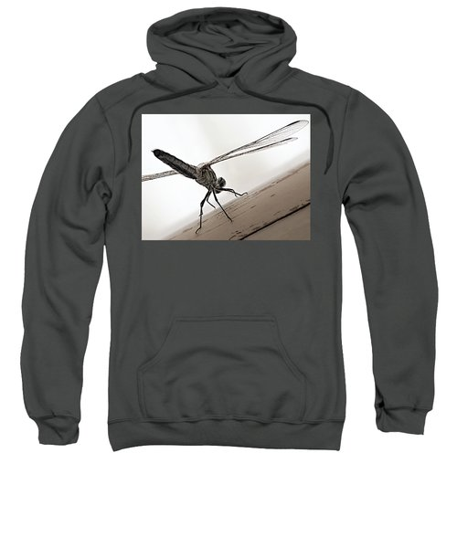 Dragon Of The Air  Sweatshirt