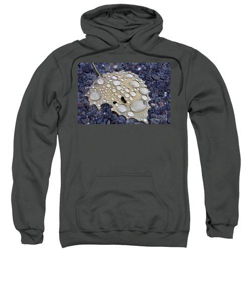 Drenched Leaf Sweatshirt
