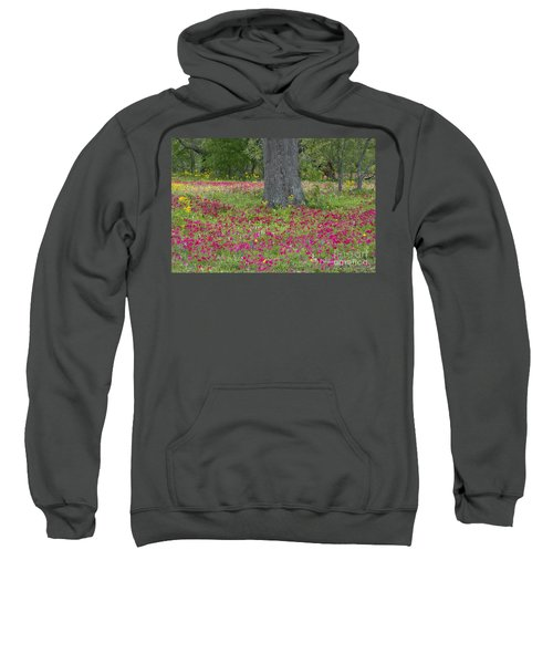 Drummonds Phlox And Crown Tickweed Central Texas Sweatshirt