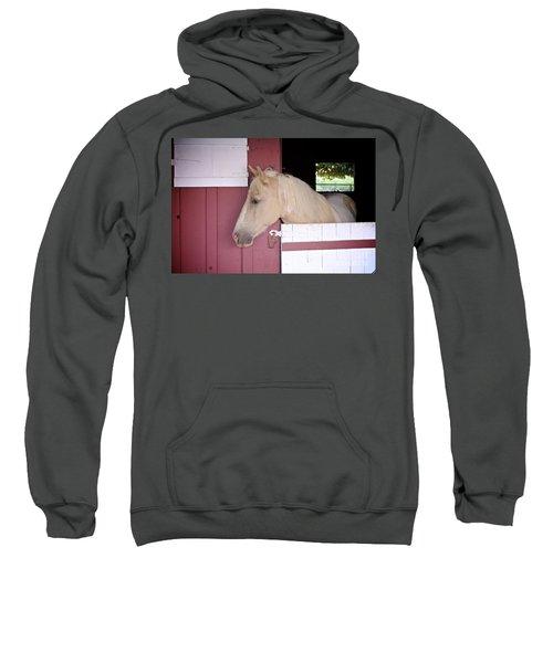 Dusty Sweatshirt