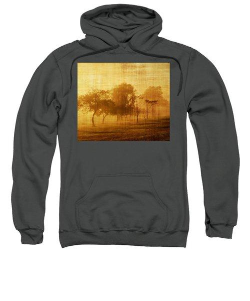 Dusty Mornings In The Sun Vintage Sweatshirt