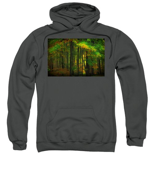 Early Fall 4 Sweatshirt