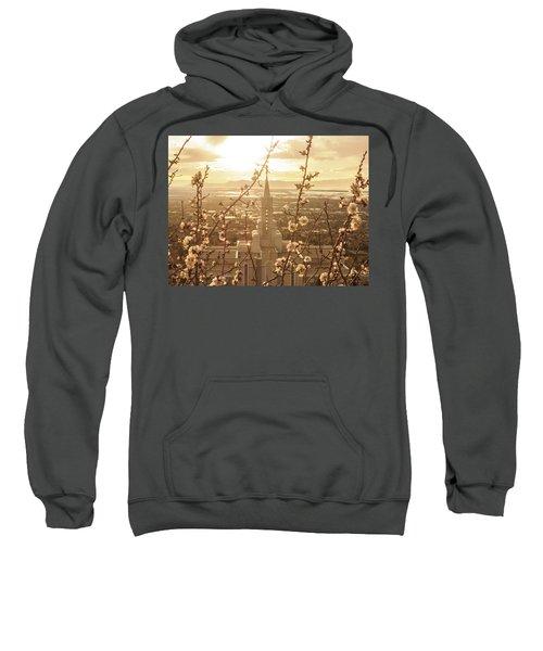Earth Renewed Sweatshirt