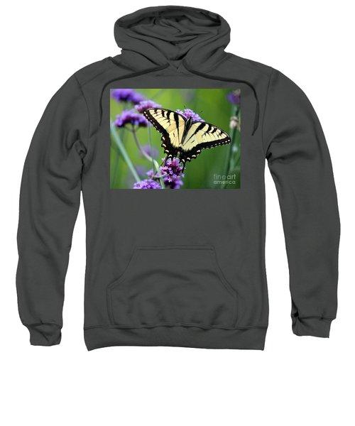 Eastern Tiger Swallowtail Butterfly 2014 Sweatshirt