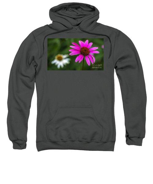 Echinacea Purpurea Sweatshirt