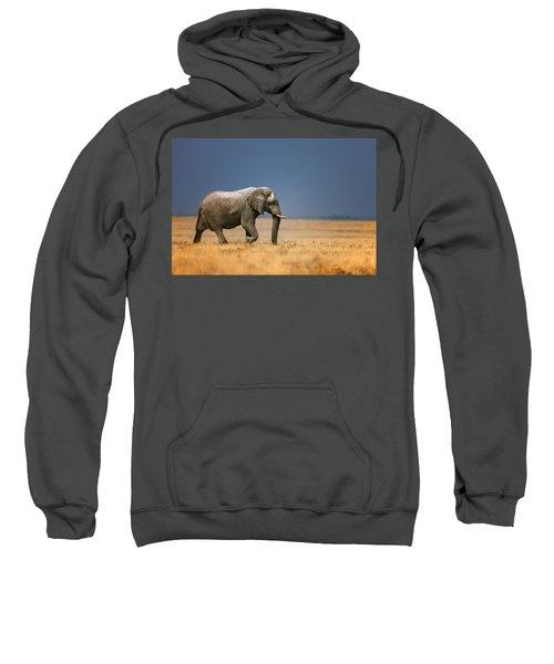Elephant In Grassfield Sweatshirt