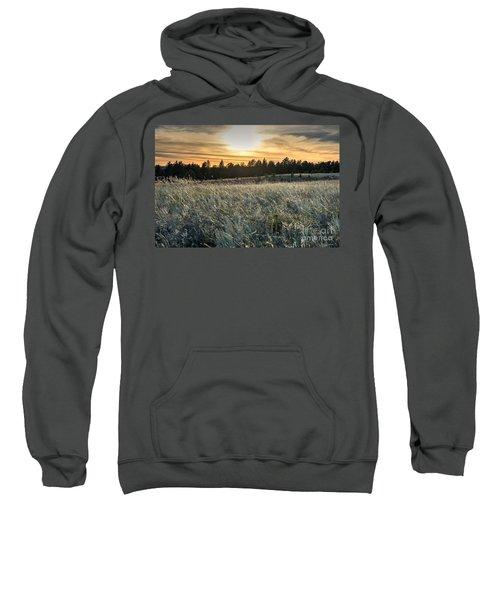 Evening Grasses In The Black Hills Sweatshirt