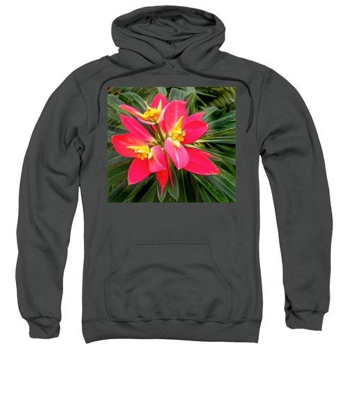 Exotic Red Flower Sweatshirt
