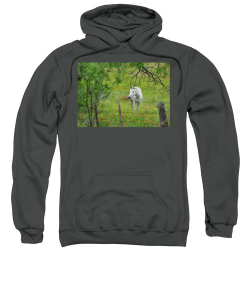 Eye On Beauty Sweatshirt