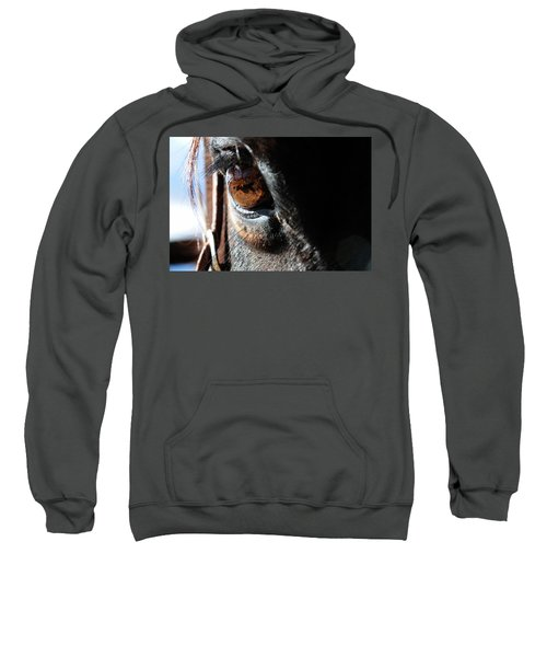 Eyeball Reflection Sweatshirt