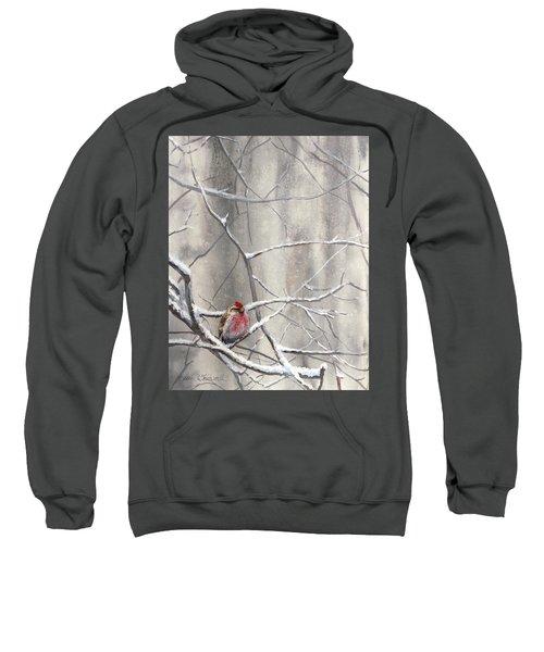 Eyeing The Feeder Alaskan Redpoll In Winter Sweatshirt by Karen Whitworth